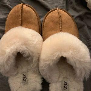 Ugg slippers women